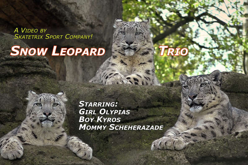 Snow Leopard KYROS - We are starring in a new video!