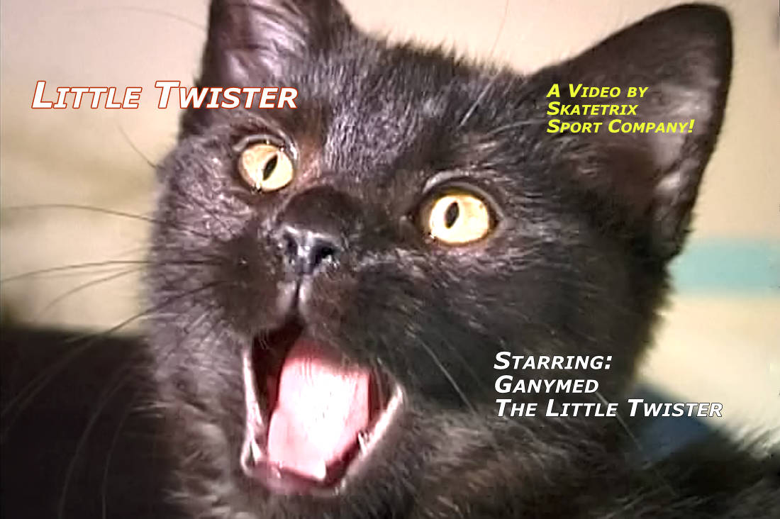 Video: LITTLE TWISTER! The 4-month-old little British short hair tomcat. An indefatigable bundle of energy on 4 little paws. Certainly, I'm still small, but the big world is mine. Why? - see my video clips!